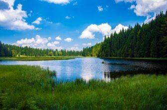 Лечение на озере Шира